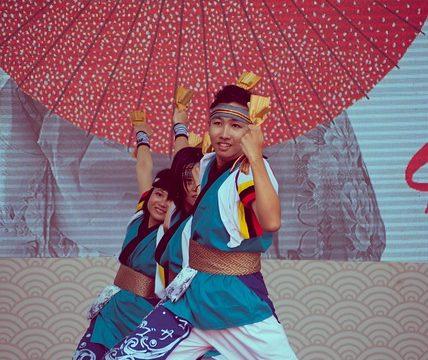 Tuan Hung NguyenによるPixabayからの画像